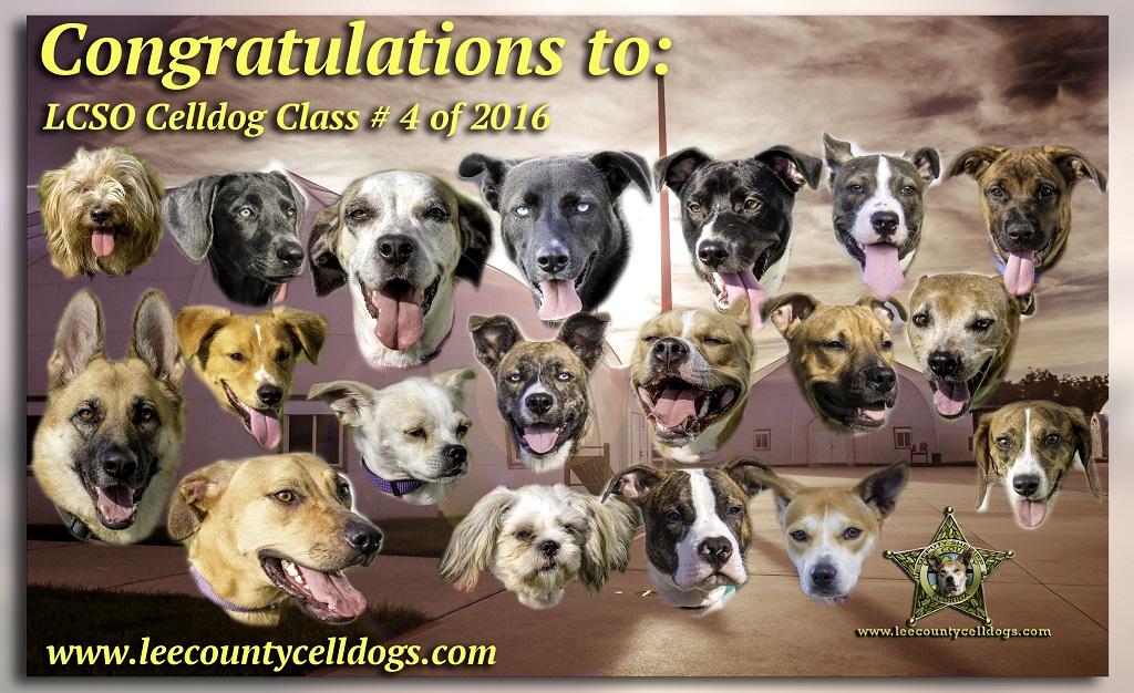 CLASS # 4 OF 2016