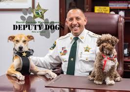 deputydogs@sheriffleefl.org or